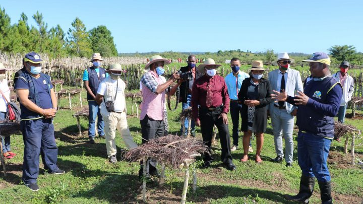 Asa Avotra mirindra ou Filet Sociaux Productifs - Manakara: Rencontre avec les familles bénéficiaires